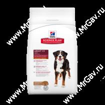 Hill's Science Plan Advanced Fitness сухой корм для собак крупных пород ягненок с рисом, 12 кг