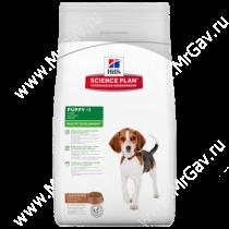 Hill's Science Plan Healthy Development сухой корм для щенков средних пород ягненок с рисом, 1 кг
