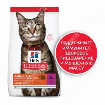 Hill's Science Plan Optimal Care сухой корм для кошек с уткой