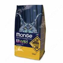 Monge Cat Bwild Hare (Заяц)