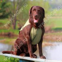 Охлаждающая попона для собак OSSO, 60 см