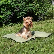 Охлаждающий коврик для собак, 55 см*70 см