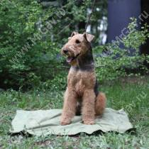 Охлаждающий коврик для собак, 75 см*100 см