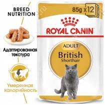 Royal Canin British Shorthair, 85 г