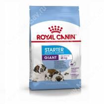 Royal Canin Giant Starter, 4 кг