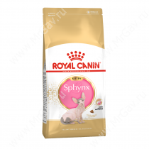 Royal Canin Kitten Sphynx