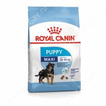 Royal Canin Maxi Junior, 3 кг