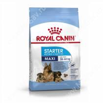 Royal Canin Maxi Starter, 4 кг