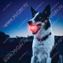 Светодиодный мяч для собак NiteIze GlowStreak, диско