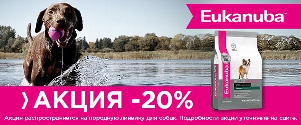 -20% на породную линейку Eukanuba