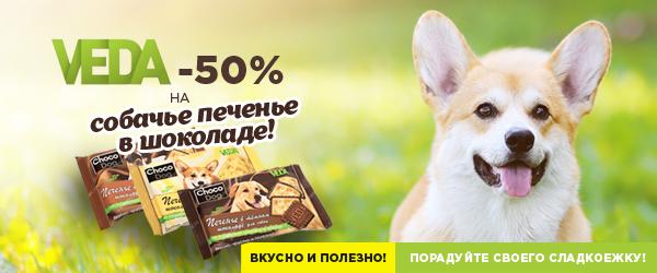 -50% на собачье печенье в шоколаде Choco Dog!