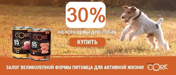 Консервы Wellness Core для собак по отличному предложению - 30%